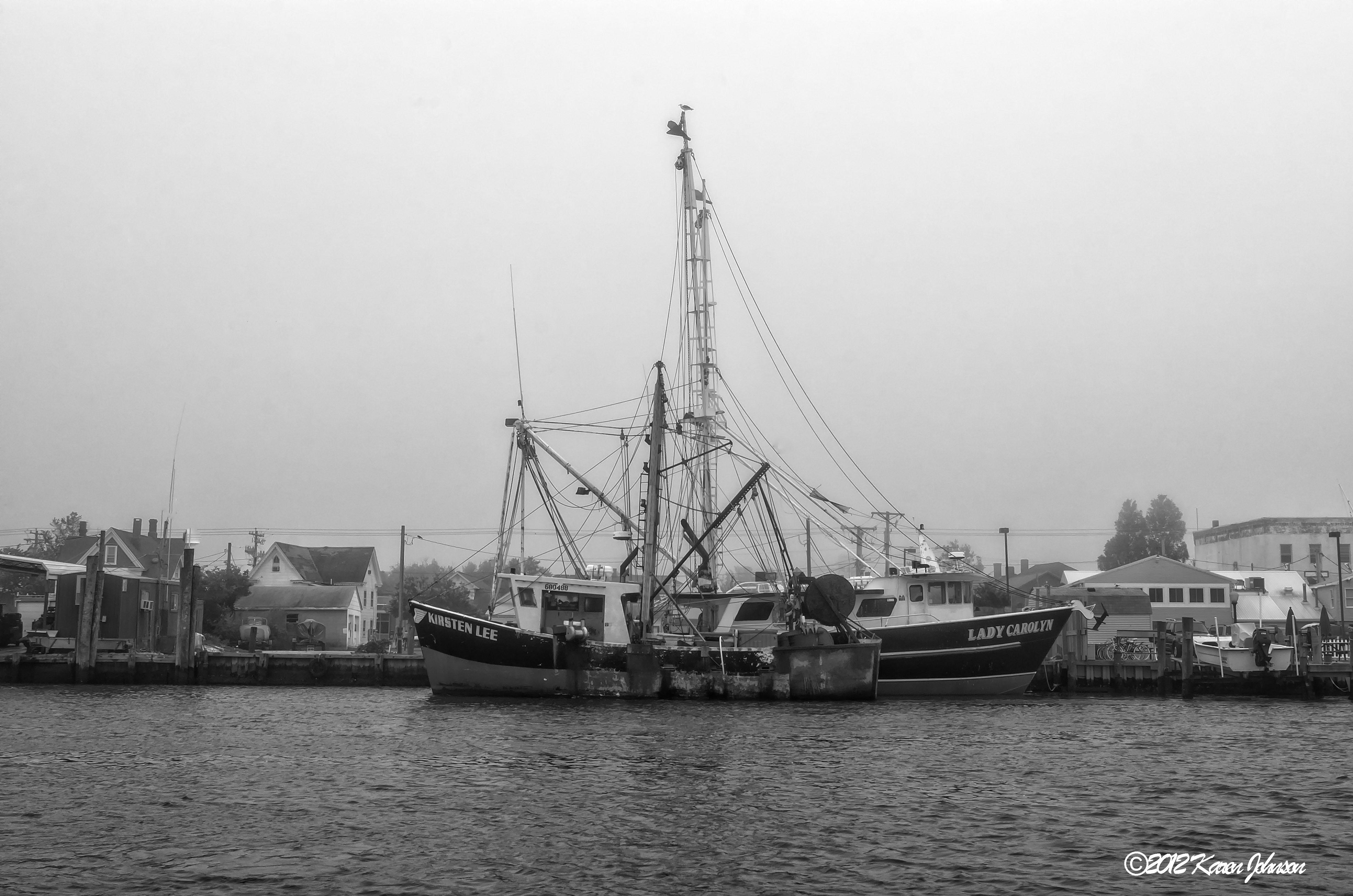 Assateague Island Boat Tours