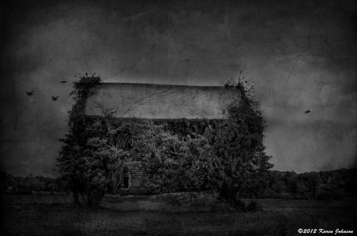 Assateague Abandoned House