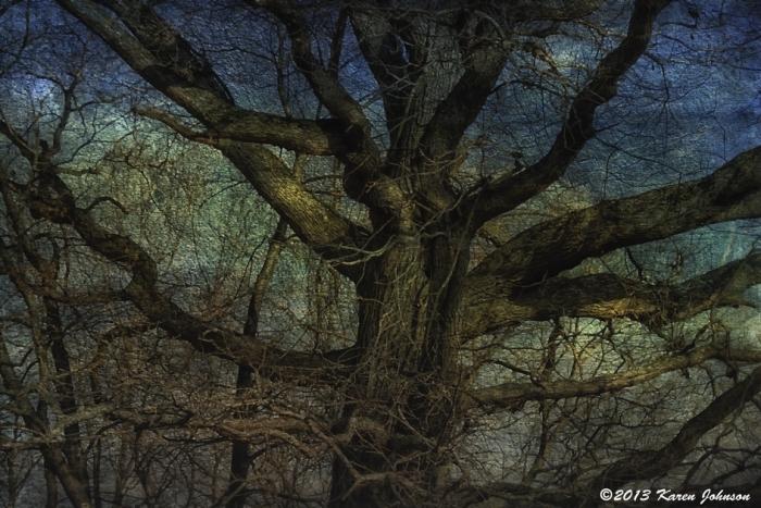 Rockefeller-tree-1