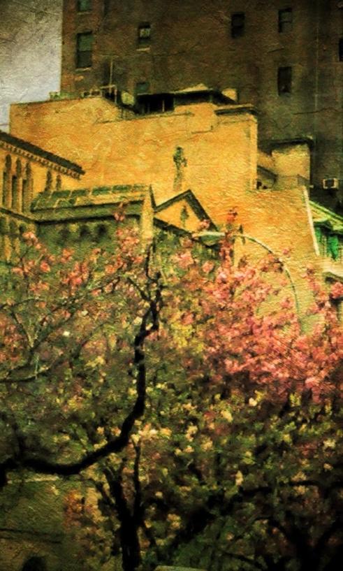 Park Avenue Spring