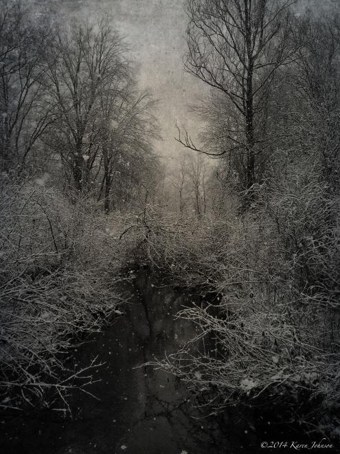 Wampus Brook 2014 Snow
