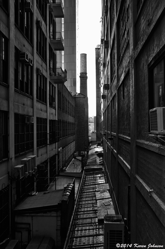 View-from-the-High-Line-June-21-2014-High-Line14