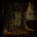 Do-Note-Enter-Tree